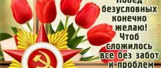 Поздравление на 23 февраля племяннику