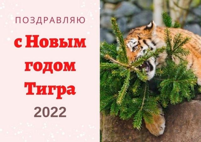 С Новым годом Тигра 2022