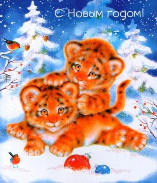 Картинка с пожеланием на Новый год Тигра