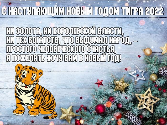 С наступающим Новым годом Тигра 2022