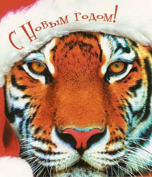 Картинка с поздравлением на Новый год Тигра 2022