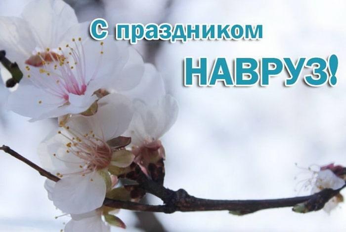 С праздником Навруз