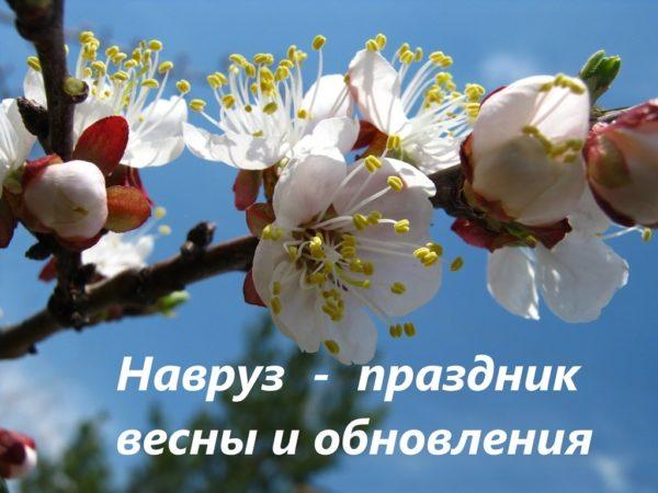 Навруз - праздник весны и обновления