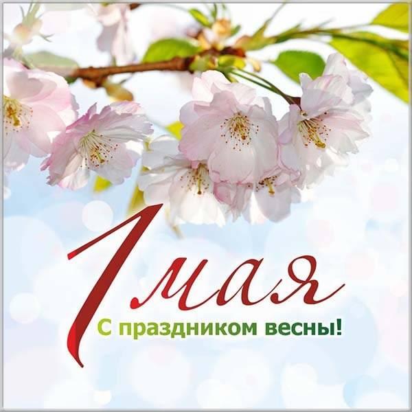 1 мая - с праздником весны