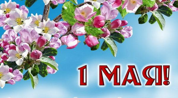 Пожелание на 1 мая коллегам